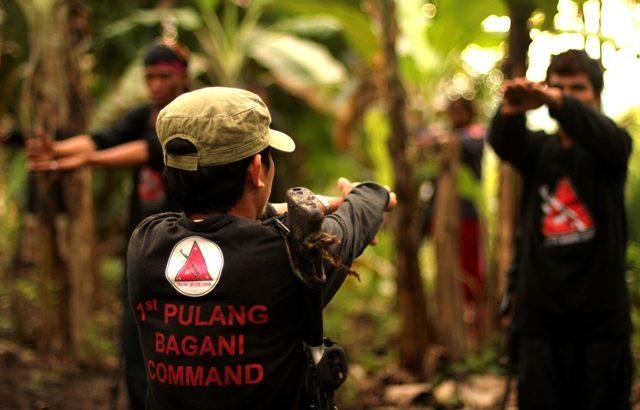 Bakit hindi matalu-talo ang New People's Army?