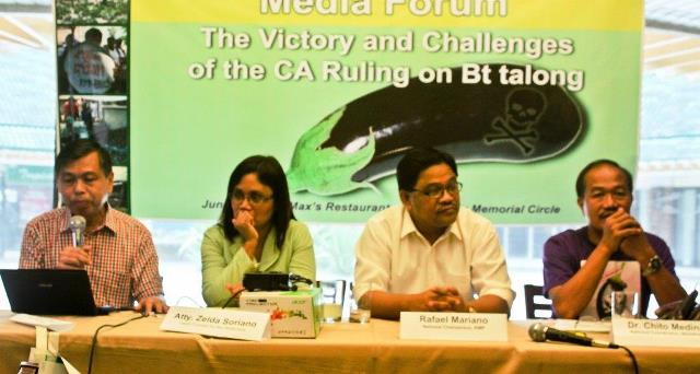 Petitioners counter pressures to reverse court ruling vs BT eggplant