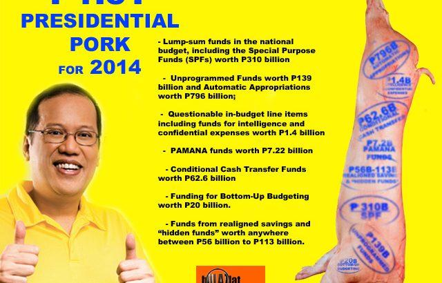 Probe use of Malampaya funds, Aquino's 'biggest pork', COA urged
