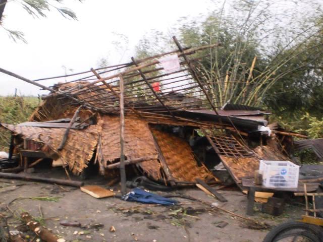 The hut destroyed by security guards of the Tarlac Development Corporation (Tadeco) this morning. (photo courtesy of Unyon ng Manggagawa sa Agrikultura)