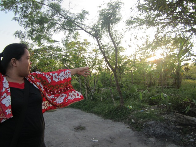 Sydney Ramos points to the palay they were not allowed to harvest in the morning of November 15. (Photo by Ronalyn V. Olea/ Bulatlat.com)