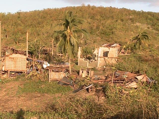 Typhoon Yolanda also wreaked havoc in Cebu. (Photo courtesy of Citizen's Disaster Response Center / Bulatlat.com)