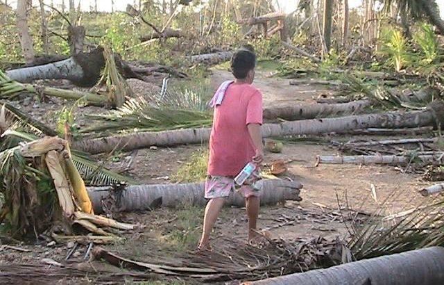 In Negros, Cebu, typhoon Haiyan unleashes wrath