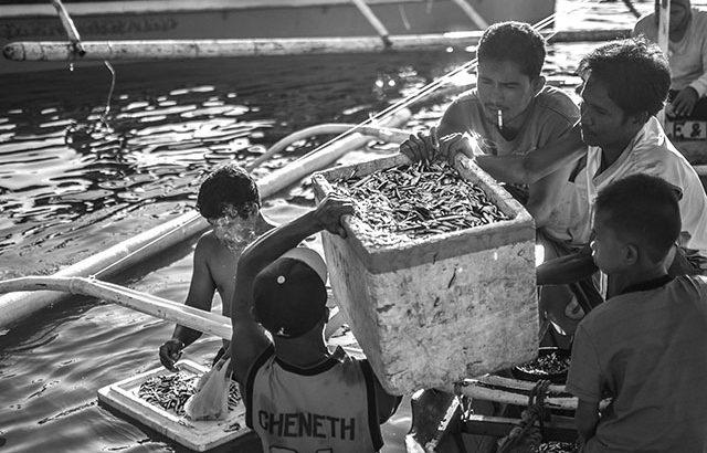 Amid typhoon Karding, monsoon rains, fishers appeal for aid, BFAR action