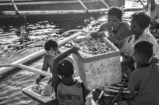 PW-fishermen, fishing, fish