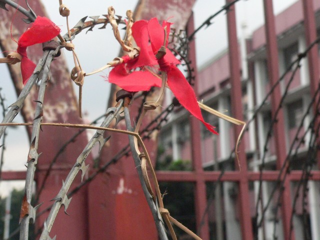 A kodaw with red cloth on a concertina wire at Mendiola (Photo by D. Ayroso)