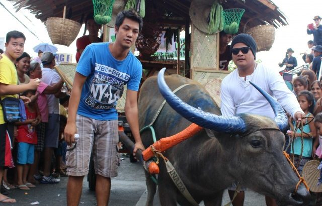 Pulileños celebrate the Kneeling Carabao festival