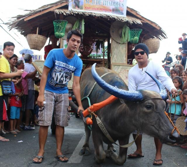Pulileños celebrate the Kneeling Carabao festival
