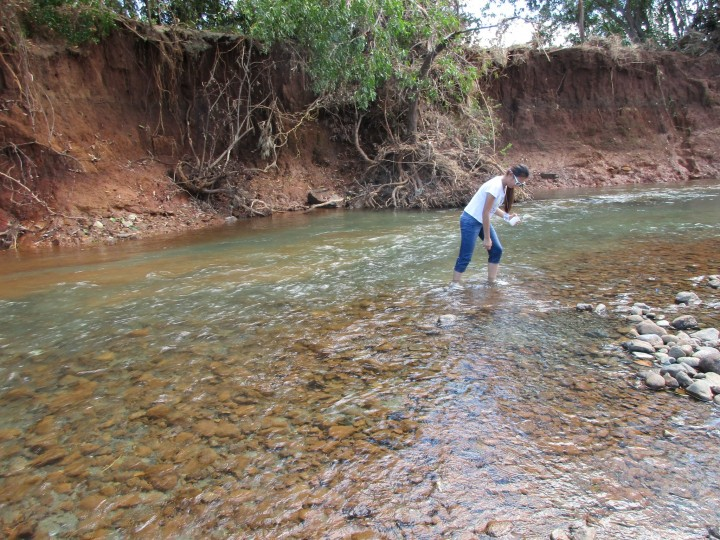 A member of the NFFSM takes a sample from upstream Sta. Cruz river. The scoured riverbank can be seen in the backgroud. (Contributed photo)