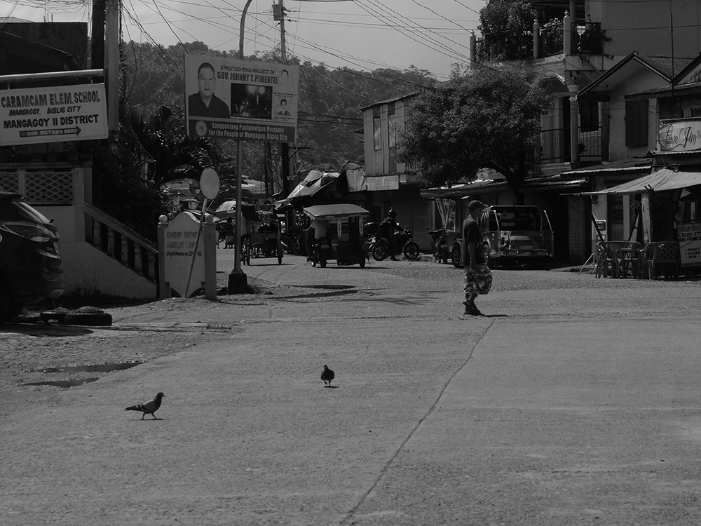 Two doves share the road with a pedestrian on a lazy mid-morning.  (Bislig City, Surigao del Sur)