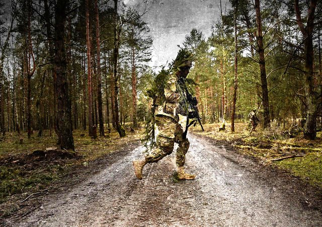 US military greenwashing
