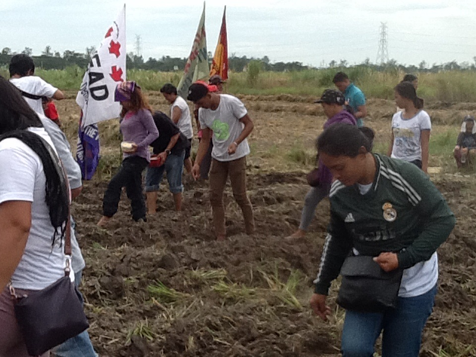 Bungkalan participants push the soil with their feet to cover the corn seeds (Photo by Dee Ayroso/Bulatlat)
