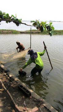 Taliptip fisherfolk