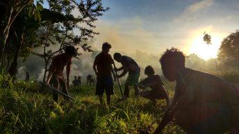 Kabataan, mga binhing sumisibol
