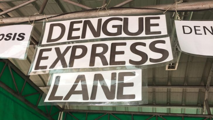 Gov't hospital workers respond to dengue cases amid limited resources