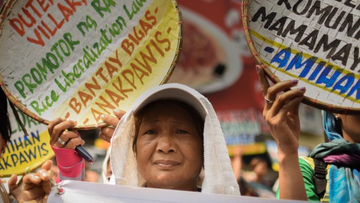 World biggest rice importer? Peasant group renews call to junk liberalization law