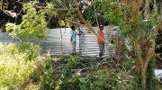42 farmer-families in Bataan displaced amid lockdown