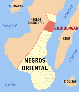 Red-tagged doctor, husband killed in Negros Oriental