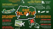 Lab Notes | Mangroves 101: Why we need to #SaveTaliptip