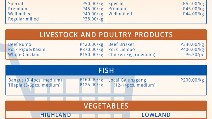 Allowing more pork imports to leave local hog raisers bankrupt – agri groups