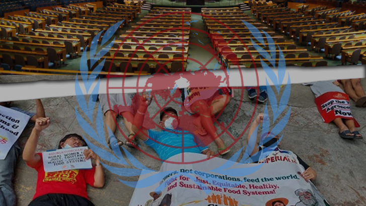 ICYMI | What is wrong with the UN Food Systems Summit?