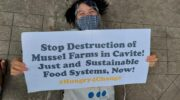 UN Food Systems Summit told to present 'actionable, pro-people and pro-planet alternative' to food systems