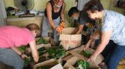 Community kitchens serve warm meals, show govt negligence
